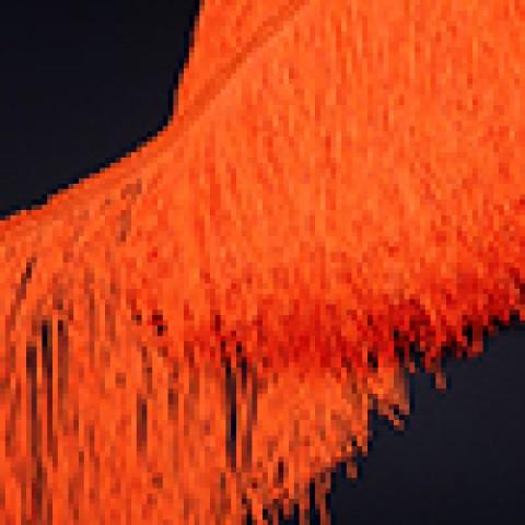 Флюоресцентно-Оранжевый