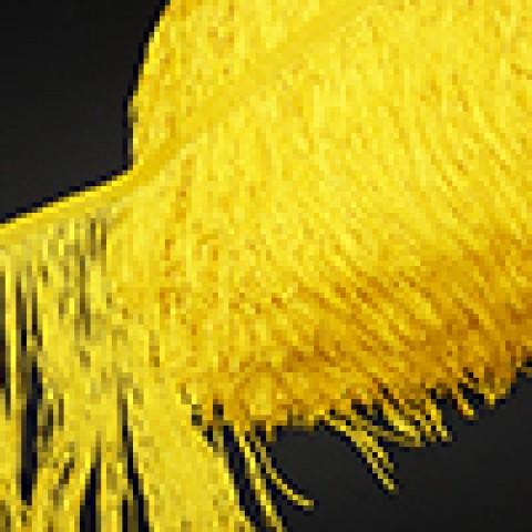 Тёмно-Жёлтый