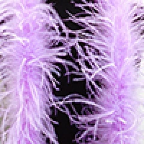 Светло-Фиолетовый