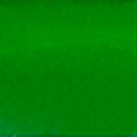 Зелёная светлая #717