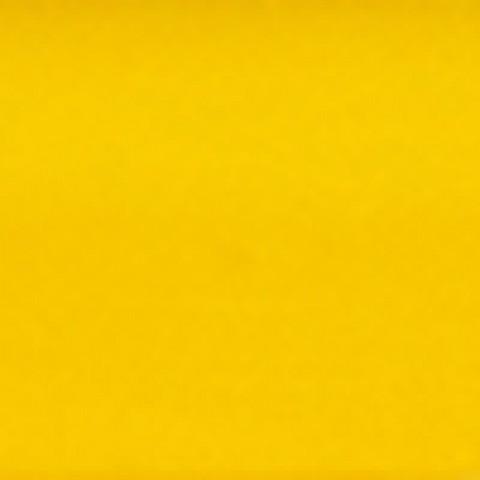 Жёлтая средняя #220