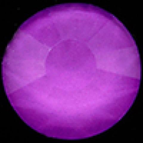 Фиолетовый Неон